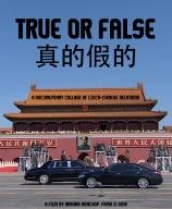 true-or-false-poster